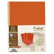Paquet de 25 chemises dos toilé Forever® 320g/m2 - 24x32cm. (770007E)