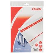 Étiquette dorsale Esselte 49x158mm à insérer large blanc