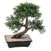 Plante artificielle d'intérieur Bonsaï black willow 50 cm