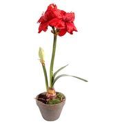 Kunstbloem Amaryllis rood voor binnen 65 cm
