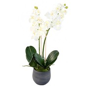Kunstpflanze Orchidee in graphitfarbigen Topf 65 cm