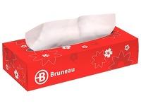Pack handkerchiefs Bruneau 20 + 10 for free