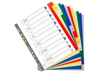 Tabbladen A4+ polypropyleen gekleurd Exacompta 12 verdelingen maandelijks veelkleurig - 1 set